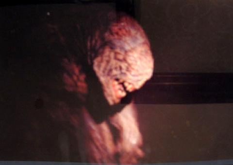кадр №1028 из фильма Doom