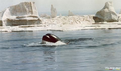 кадр №109217 из фильма Смерть среди айсбергов