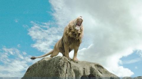 кадр №1096 из фильма Хроники Нарнии: Лев, Колдунья и Волшебный шкаф