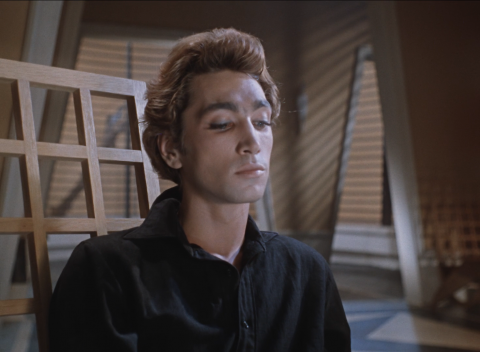кадр №111166 из фильма Человек-амфибия
