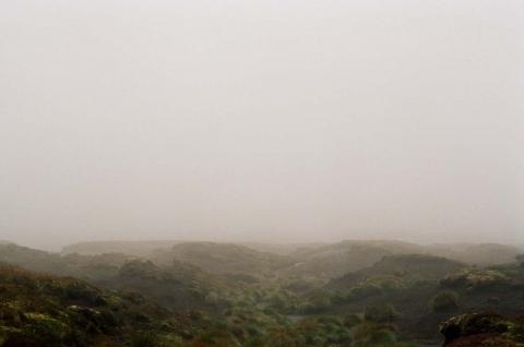 кадр №113756 из фильма Грозовой перевал