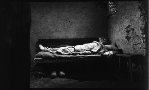 кадр №114236 из фильма Туринская лошадь