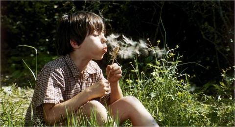 кадр №116106 из фильма Сфера колдовства