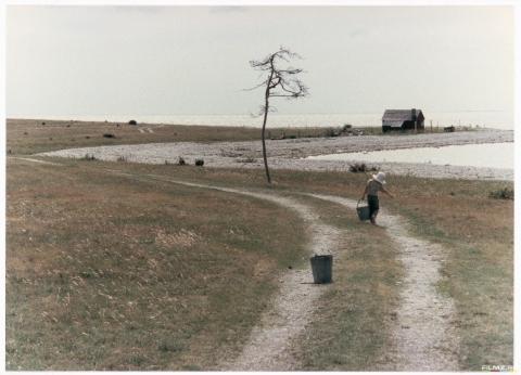 кадр №116803 из фильма Жертвоприношение