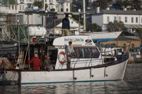 кадр №118009 из фильма Заклинательница акул