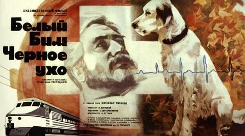 плакат фильма Белый Бим Черное ухо