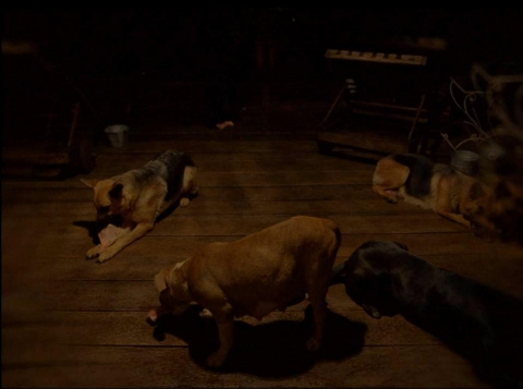 кадр №119446 из фильма После мрака свет
