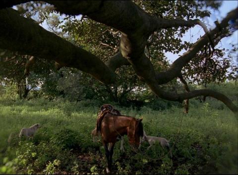 кадр №119450 из фильма После мрака свет