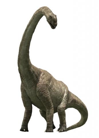 кадр №121349 из фильма Тарбозавр 3D
