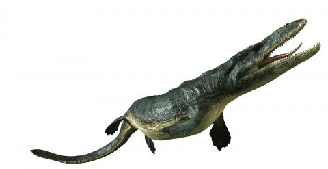 кадр №121350 из фильма Тарбозавр 3D