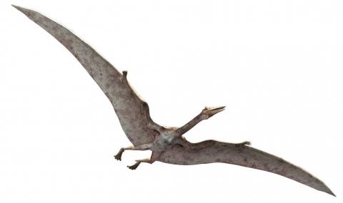 кадр №121352 из фильма Тарбозавр 3D