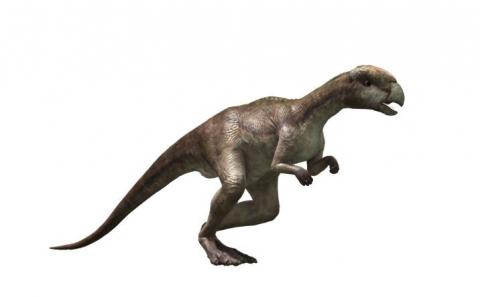 кадр №121353 из фильма Тарбозавр 3D