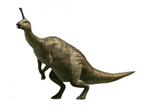 кадр №121357 из фильма Тарбозавр 3D