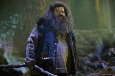 кадры из фильма Гарри Поттер и Орден Феникса Робби Колтрейн,