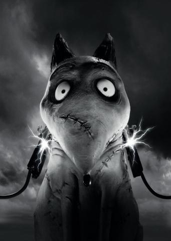 плакат фильма характер-постер textless Франкенвини