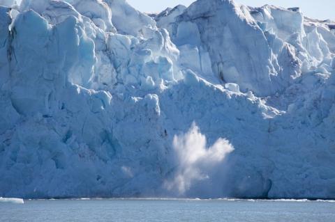 кадр №129159 из фильма Арктика 3D