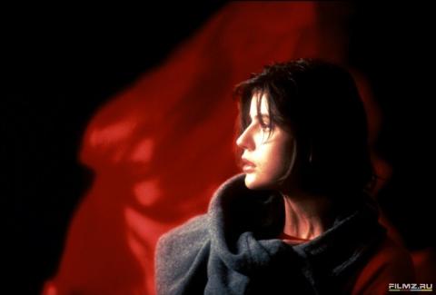 кадр №132033 из фильма Три цвета: Красный
