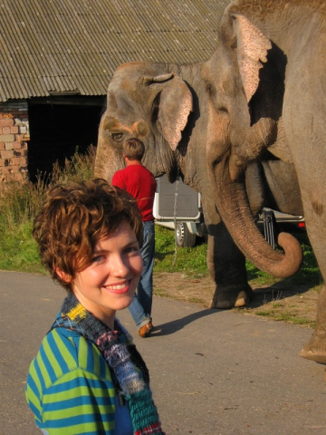 кадр №135220 из фильма Слон