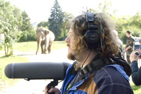 кадр №135224 из фильма Слон