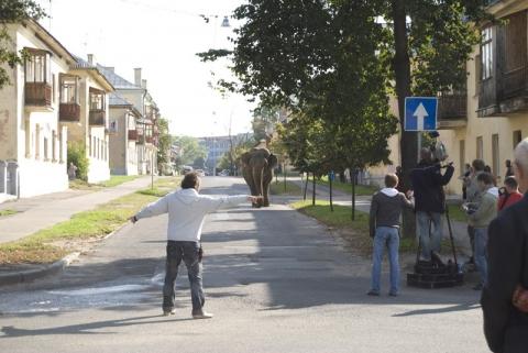 кадр №135226 из фильма Слон