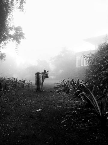 кадр №141067 из фильма После мрака свет