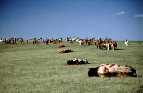 кадр №146120 из фильма Танцующий с волками