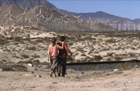 кадр №150069 из фильма 29 пальм