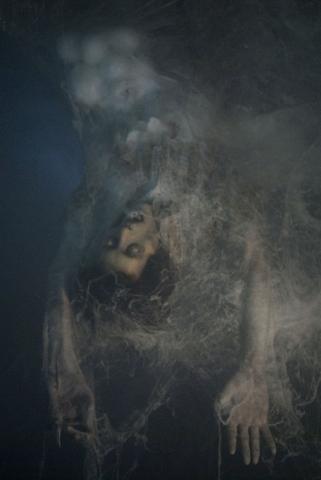 кадр №15016 из фильма Мгла