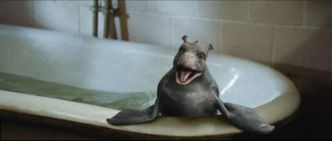кадр №15023 из фильма Мой домашний динозавр