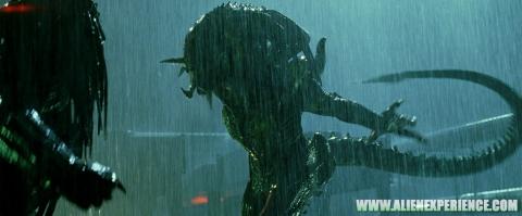 кадр №15376 из фильма Чужие против Хищника: Реквием