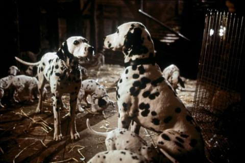 кадр №154315 из фильма 101 далматинец