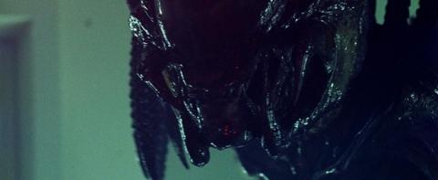 кадр №15757 из фильма Чужие против Хищника: Реквием