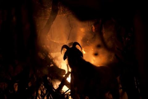 кадр №158241 из фильма Повелители Салема