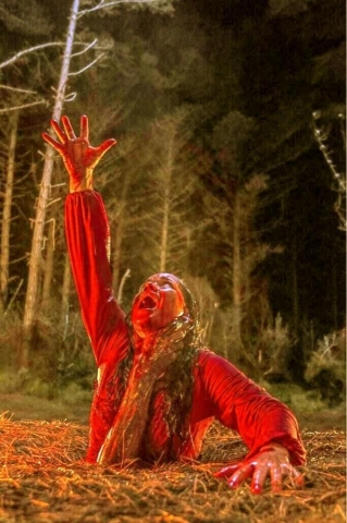 кадр №162000 из фильма Зловещие мертвецы. Черная книга