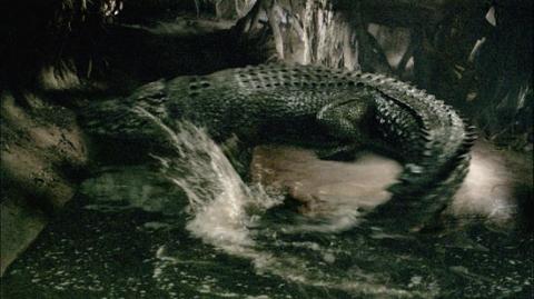 кадр №16366 из фильма Крокодил