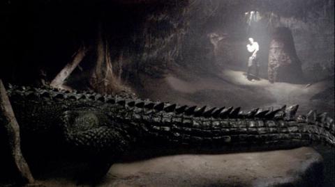 кадр №16367 из фильма Крокодил