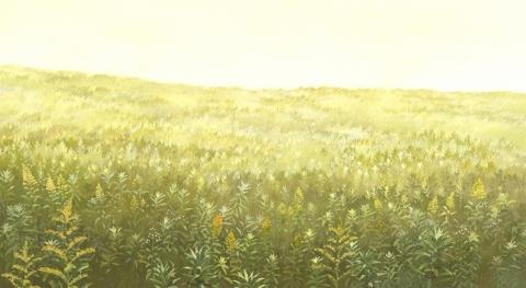 кадр №166135 из фильма Волчьи дети Амэ и Юки