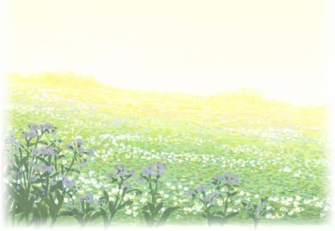 кадр №166143 из фильма Волчьи дети Амэ и Юки