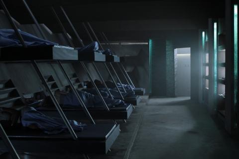 кадр №167535 из фильма Философы: Урок выживания