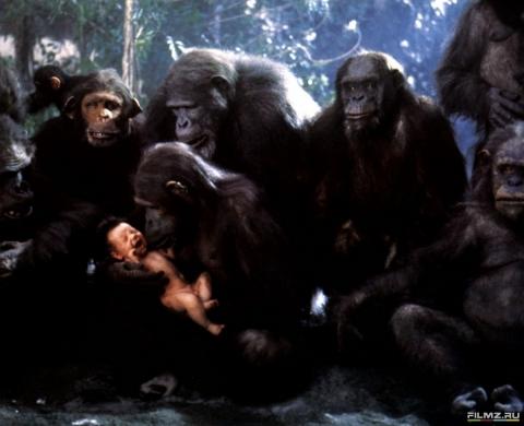 кадр №169197 из фильма Грейстоук: Легенда о Тарзане, повелителе обезьян
