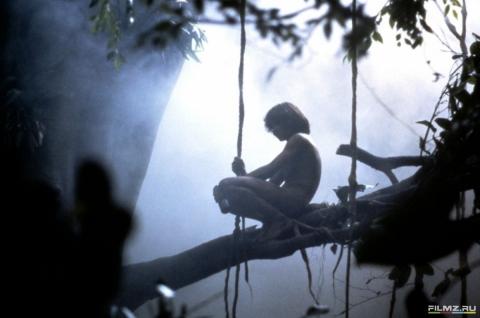 кадр №169199 из фильма Грейстоук: Легенда о Тарзане, повелителе обезьян