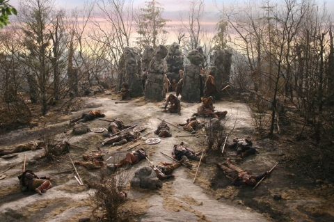 кадры из фильма Волкодав из рода Серых Псов