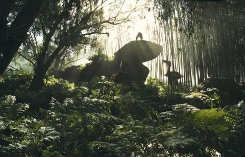 кадр №17283 из фильма 10 000 лет до н.э.