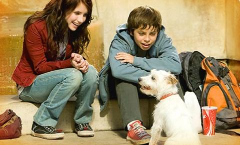 кадр №17643 из фильма Отель для собак
