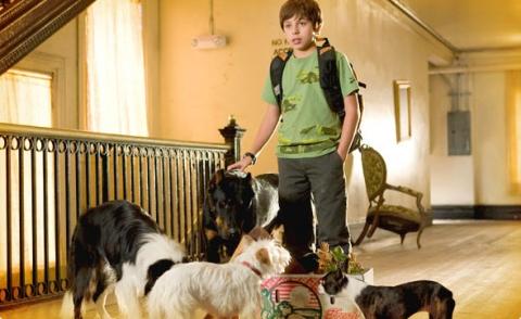 кадры из фильма Отель для собак