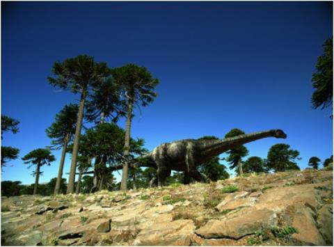 кадр №18145 из фильма Динозавры 3D: Гиганты Патагонии