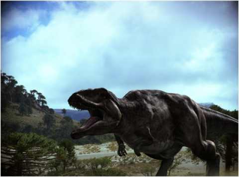 кадр №18146 из фильма Динозавры 3D: Гиганты Патагонии