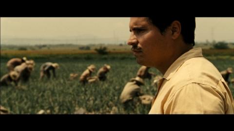 кадр №184115 из фильма Чавес*