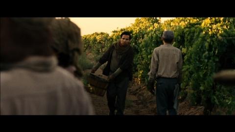 кадр №184116 из фильма Чавес*