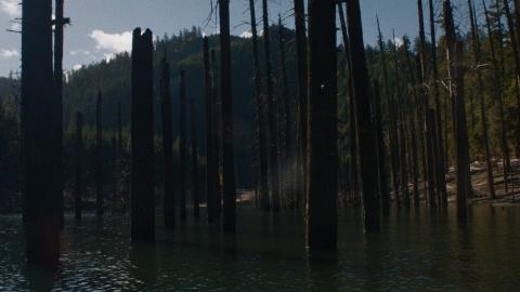 кадр №184326 из фильма Ночные движения
